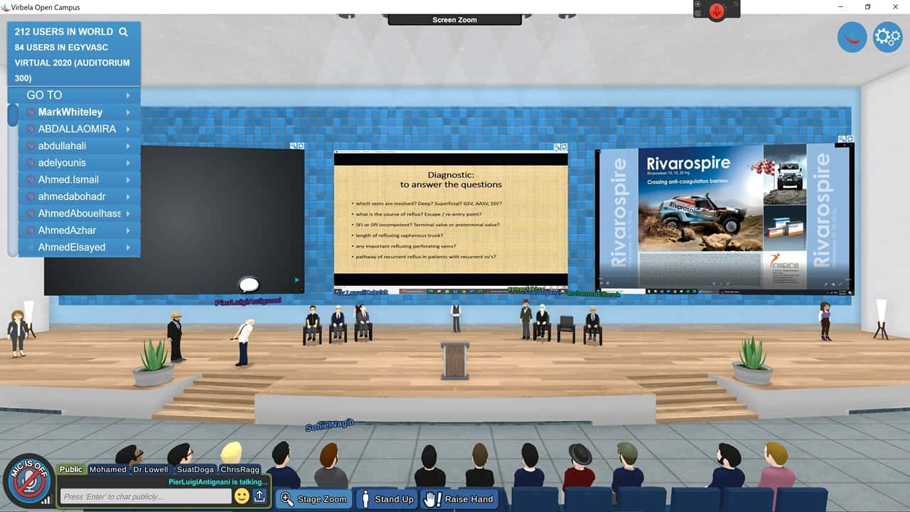 1st Virtual Veins Conference in the World EgyVasc 2020 – View of the stage