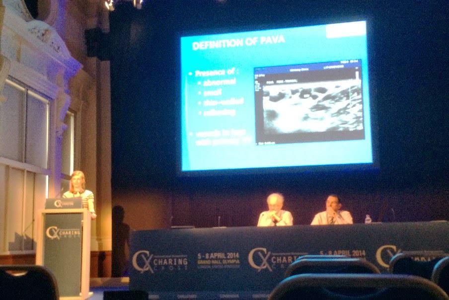 Alexandra Ostler presenting PAVA