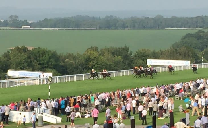 Half a furlong to go - The Whiteley Clinic Stakes Handicap Goodwood August 2016