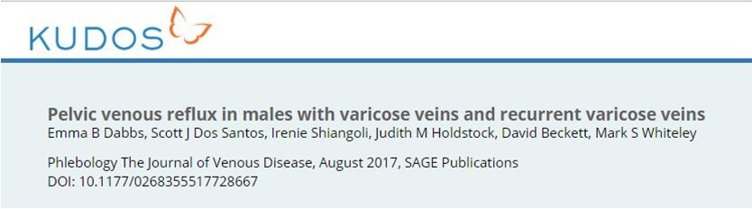 Kudos simple explanation of research into varicose veins in men arising from pelvic veins
