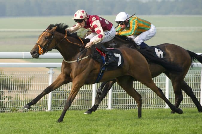 Quebee winning The Whiteley Clinic Stakes at Goodwood 27 August 2016